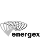 energex.png