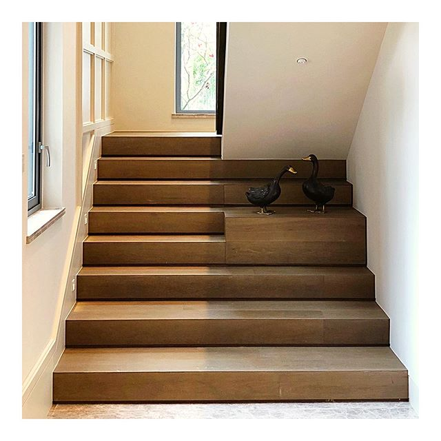 """Limited by the existing staircase core and structure, we elongated the first few steps of the stairs to create an airy feel and for the 🦆 to hang out. Located at the historic Kadoorie Avenue, for this project we transformed the old """"out of place"""" building into a modern, colonial-inspired architecture that is in harmony with the avenue's history. #teamhc #architecture #project #interiordesign #interior  #archdaily #archilovers #architectureporn #homedesign #preservation #colonial #interio #interior #interiorismo #interiores #interior_and_living #interiors #interiordesignideas #interiordesigner"""