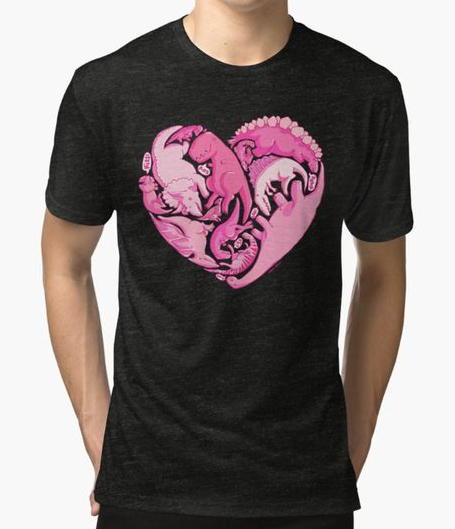 Loveasaurus T-shirt by Amz Kelso