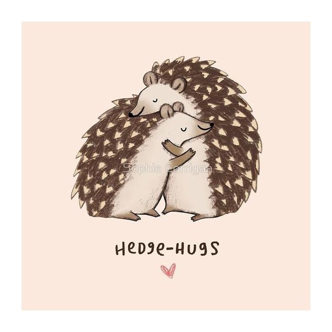Hedge-hugs by Sophie Corrigan