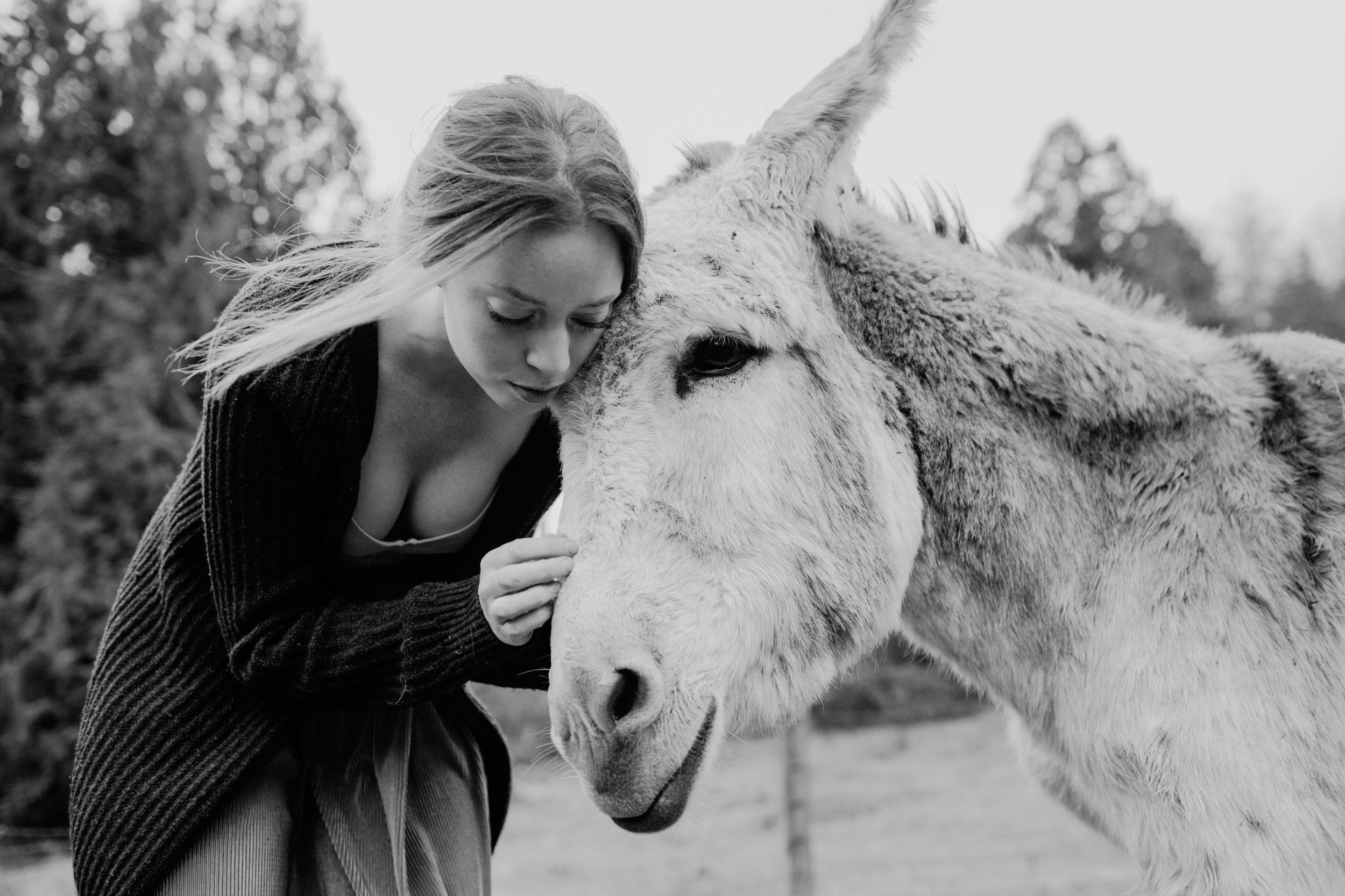 Maryam Kalhor Photography_7.jpg