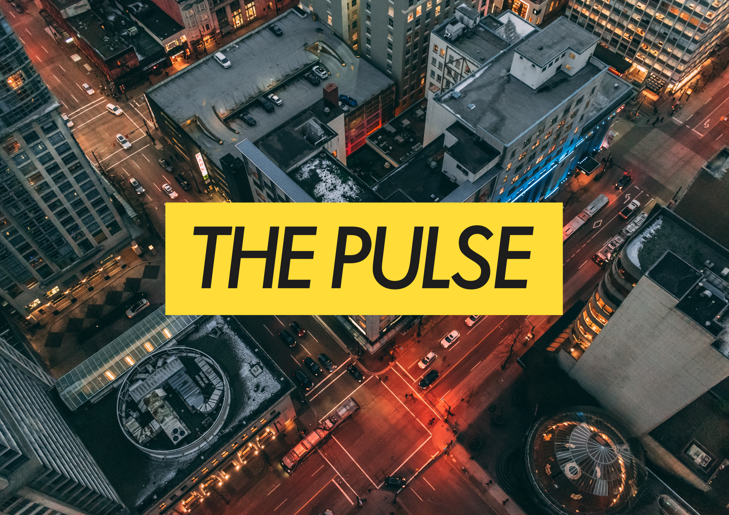 The Pulse Visual Identity.png