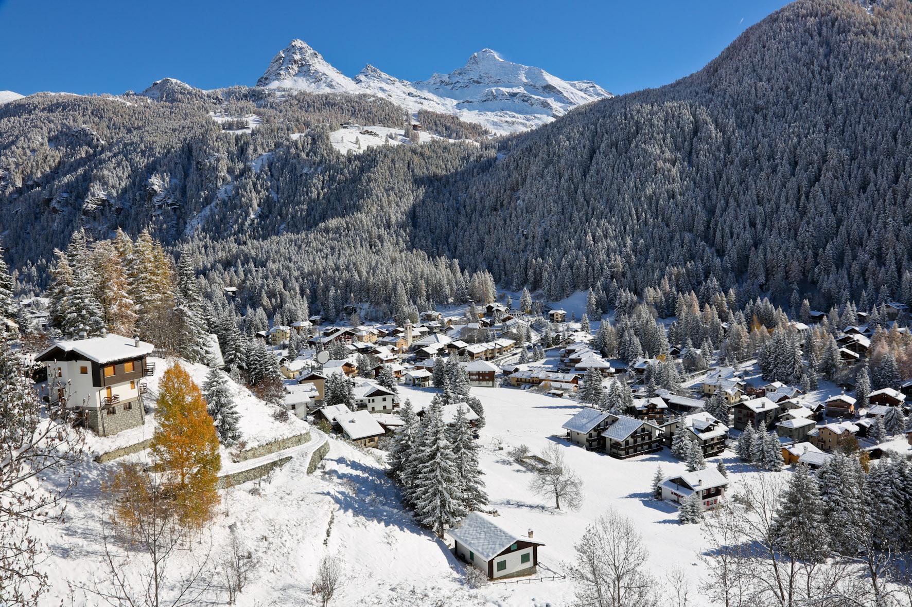 LITTLE ITALIAN PARADISE -