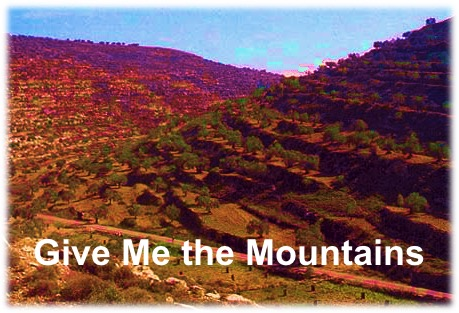 StrengthsFinder Sinagpore - Give me the mountains.jpg