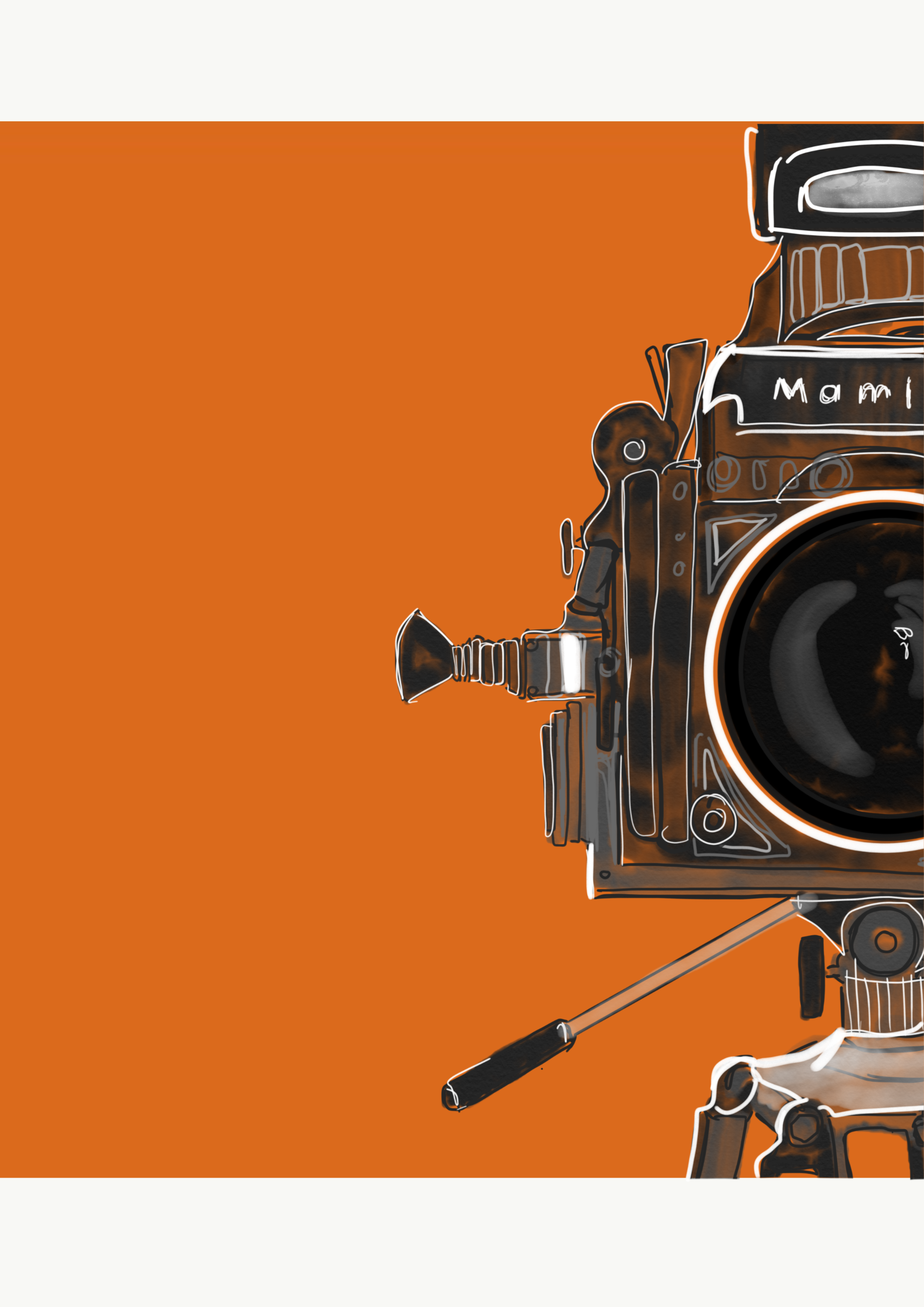 'Lights, Camera, Action' by Chris Haines