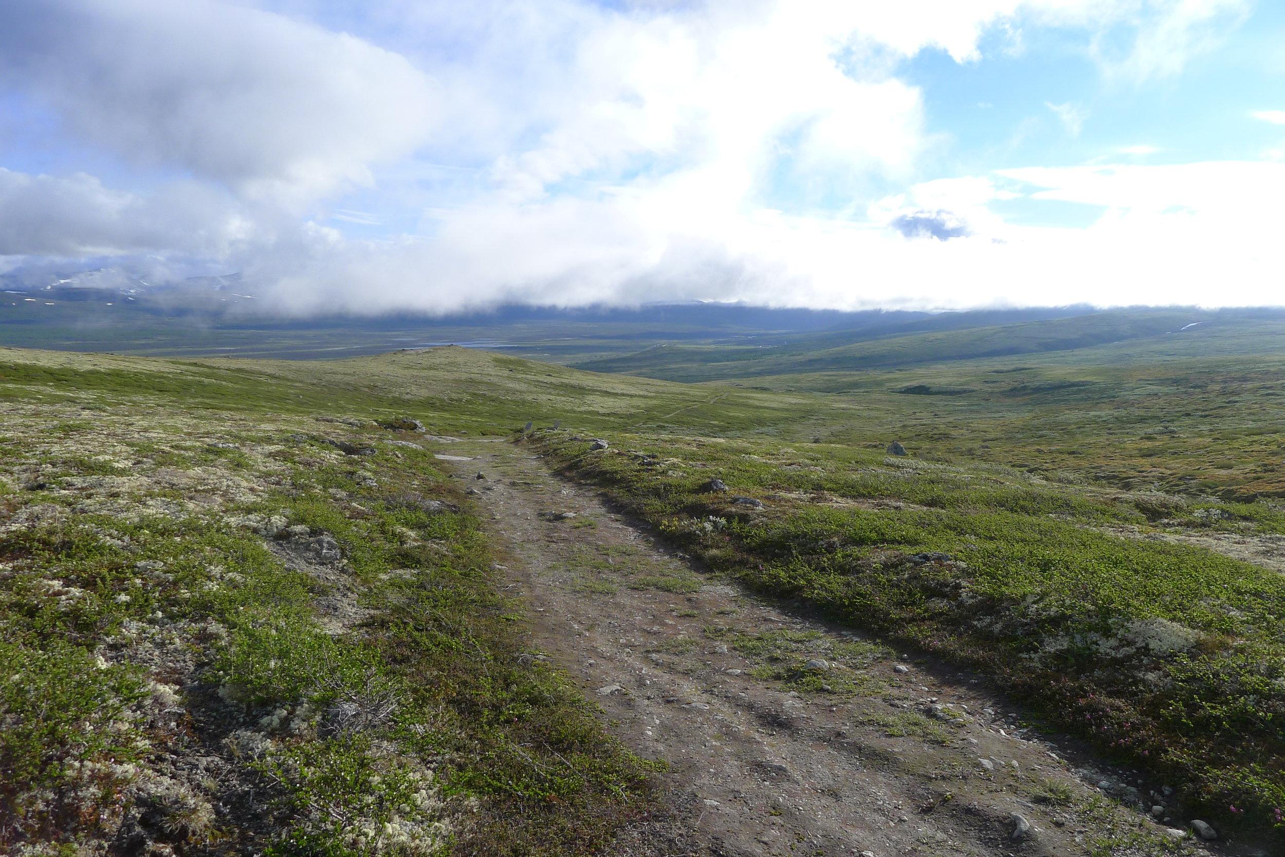 Kongevegen ved Hardbakken med utsikt mot Fokstua. Foto: Marit Johansson