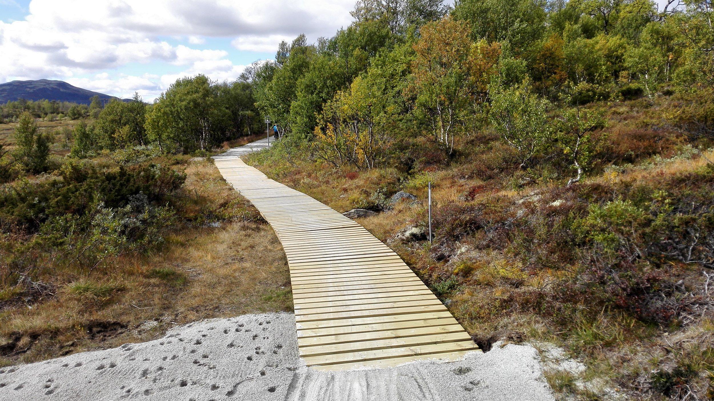 Kavlebro over myrlendt strekning. Foto: Inge Angård