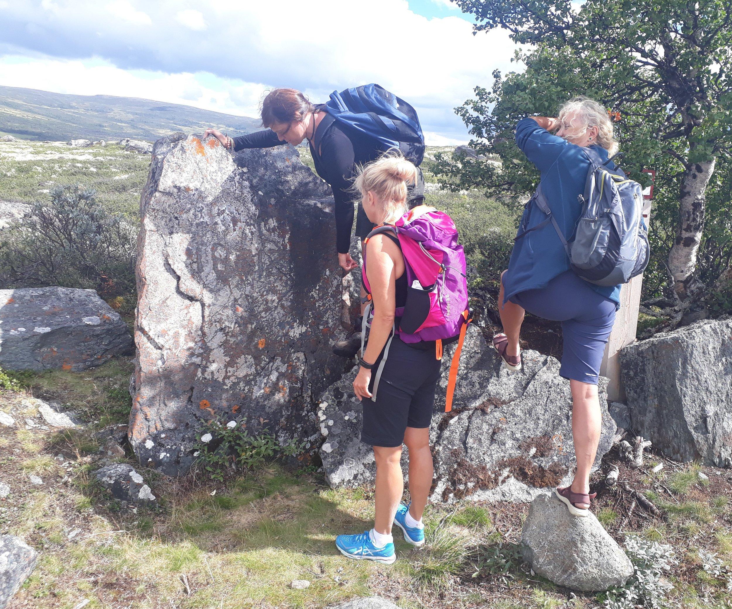 Oppdagelse av årstall på en av steinene langs kongevegen over Hjerkinnhø. Foto: Marit Johansson