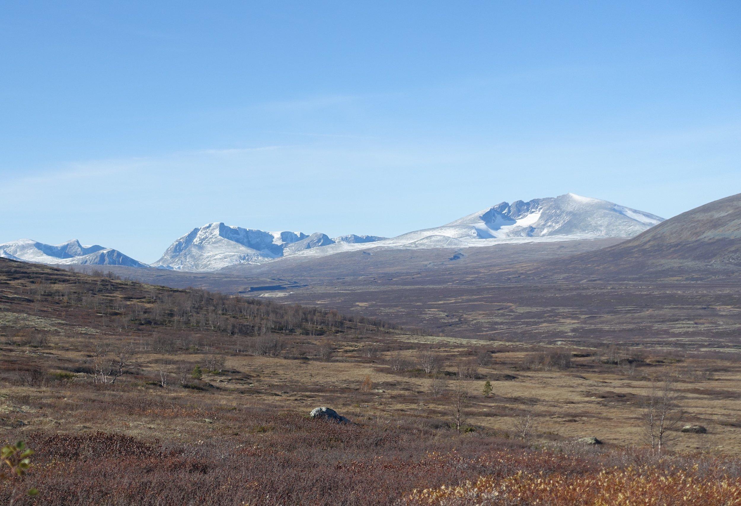 Utsikt til Snøhetta fra kongevegen over Hjerkinnhø. Foto: Izabela Chlewicka