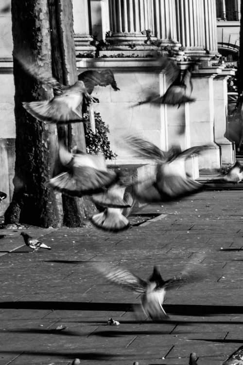street photo-29.jpg
