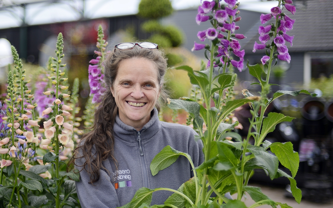- Hi, I'm Briege, the Centre Manager at Donaghadee Garden Centre.  I have been here for over 17 years and just love working with people.  We have a great team here at Donaghadee and every day is different.  I absolutely love plants… If I had to choose a favourite it would be pink Foxgloves, they are so striking and the bees love them too!
