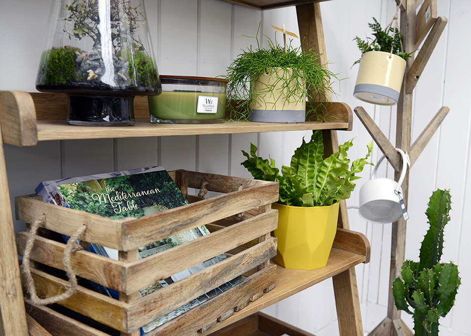 Plant Shelfie 🌵 - Shake up your shelves by adding your favourite house plant- it can really soften a space and bring it to life!