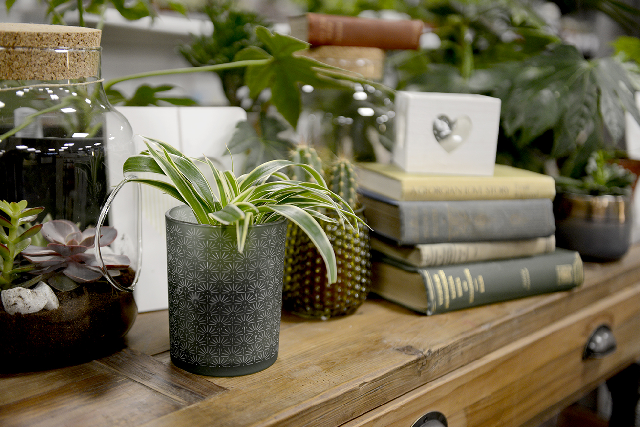 Botanical Office - There is something so aesthetically pleasing about a stack of books and a plant on your desk.