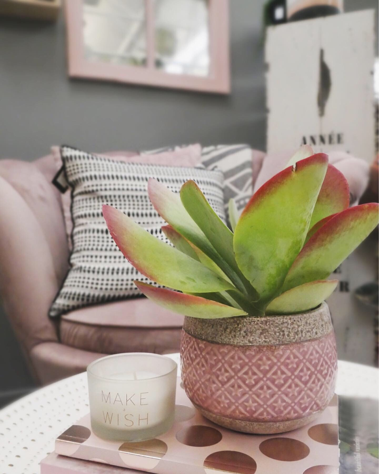Houseplant happy with pinks and greens! - Be sure to check out our stores for home inspiration for those important corners!