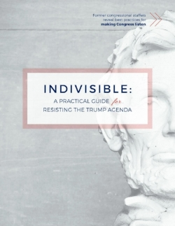 IndivisibleGuide.com