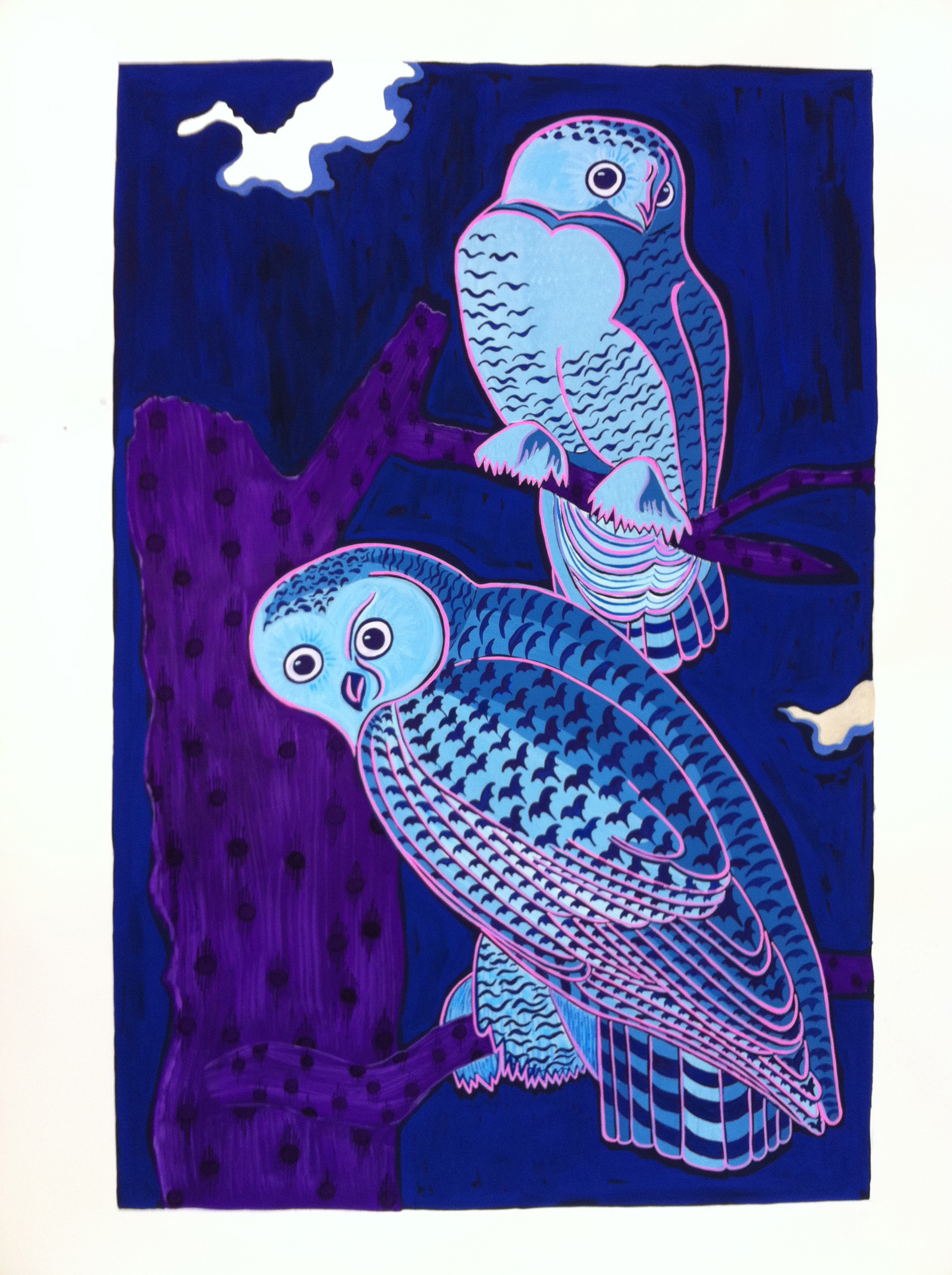 Audubon Series, Owls