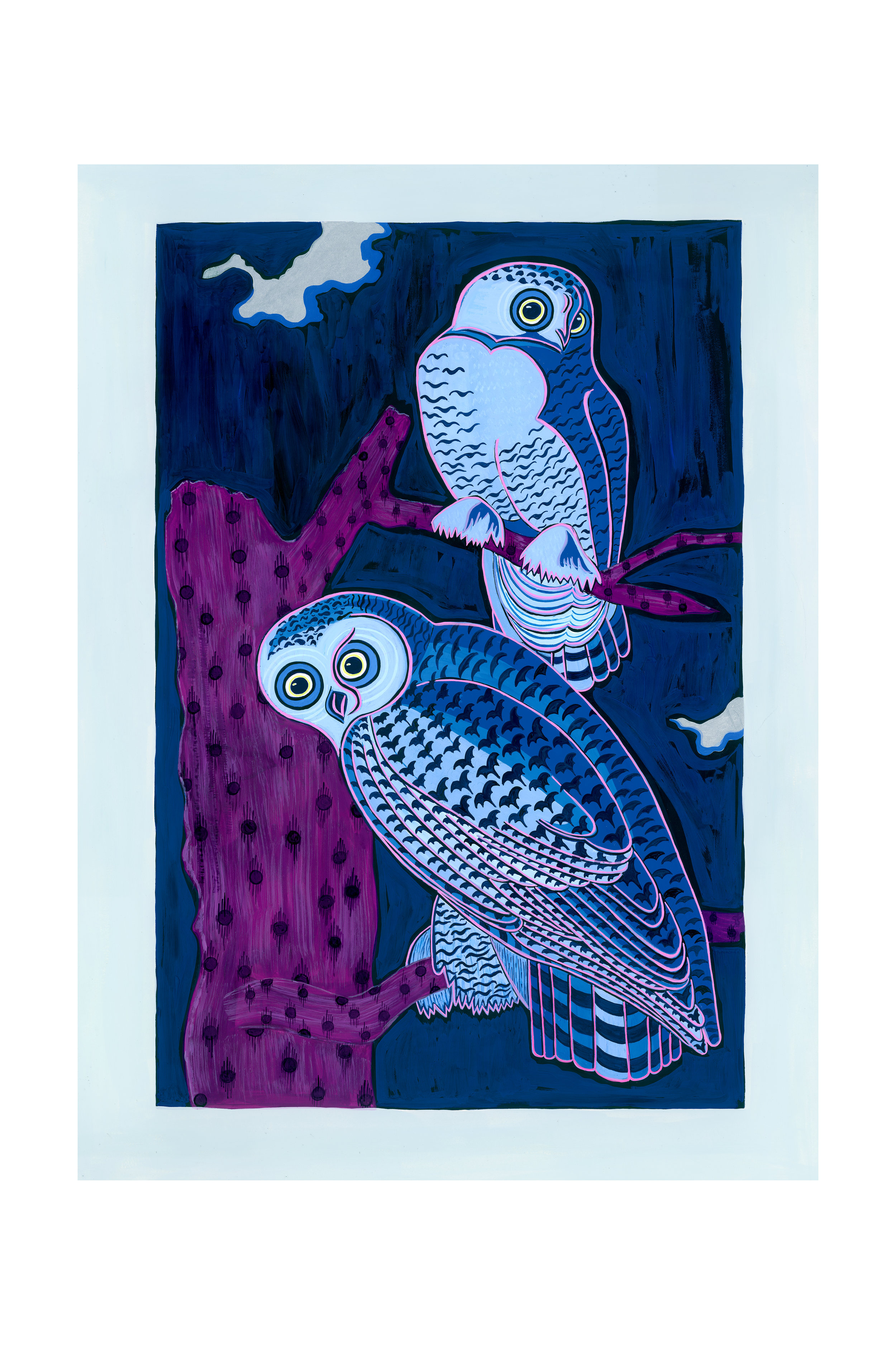 Beyond Audubon, Snowy Owls