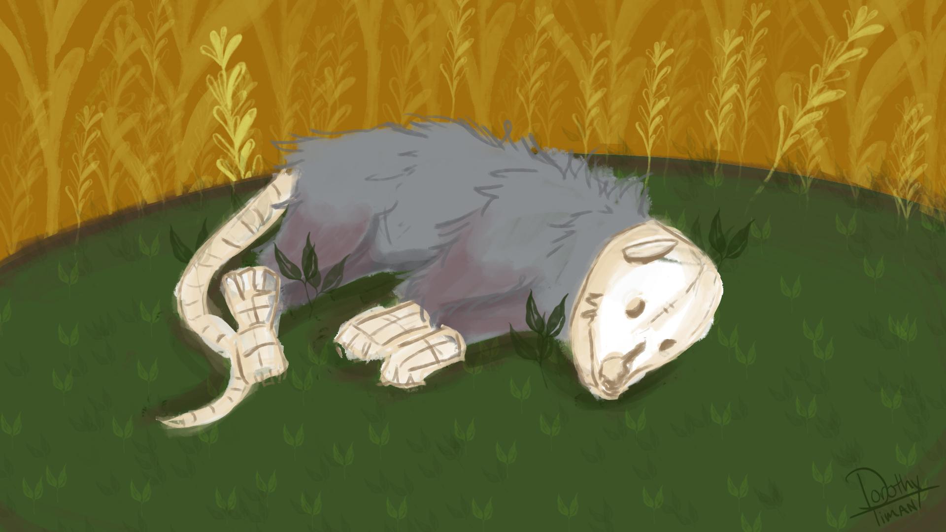 The Possum Skinner - Work in Progress