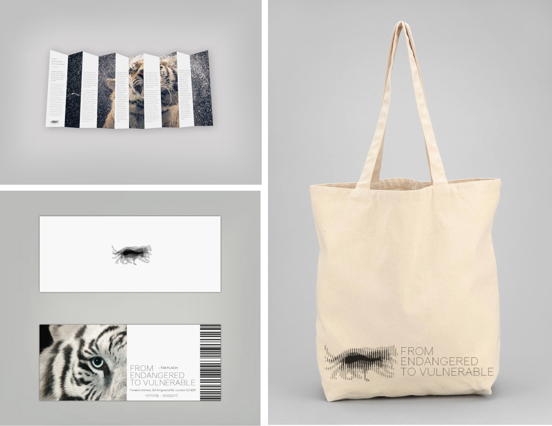 From Endangered to Vulnerable  _____  Conceptual branding for an exhibition to increase awareness of the worlds most threatened species. The name was inspired by an article from the WWF celebrating that the Giant Panda has been downgraded from 'Endangered to 'Vulnerable'. Whilst this boasts good news I couldn't help but feel saddened by the hopelessness of this minor success. The marque was inspired by old style scanimations, the suggestion of movement was to highlight the transition between the two states. I chose to use Tim Flach's photography, he has constructed a powerful visual record of remarkable animals and ecosystems facing harsh challenges.