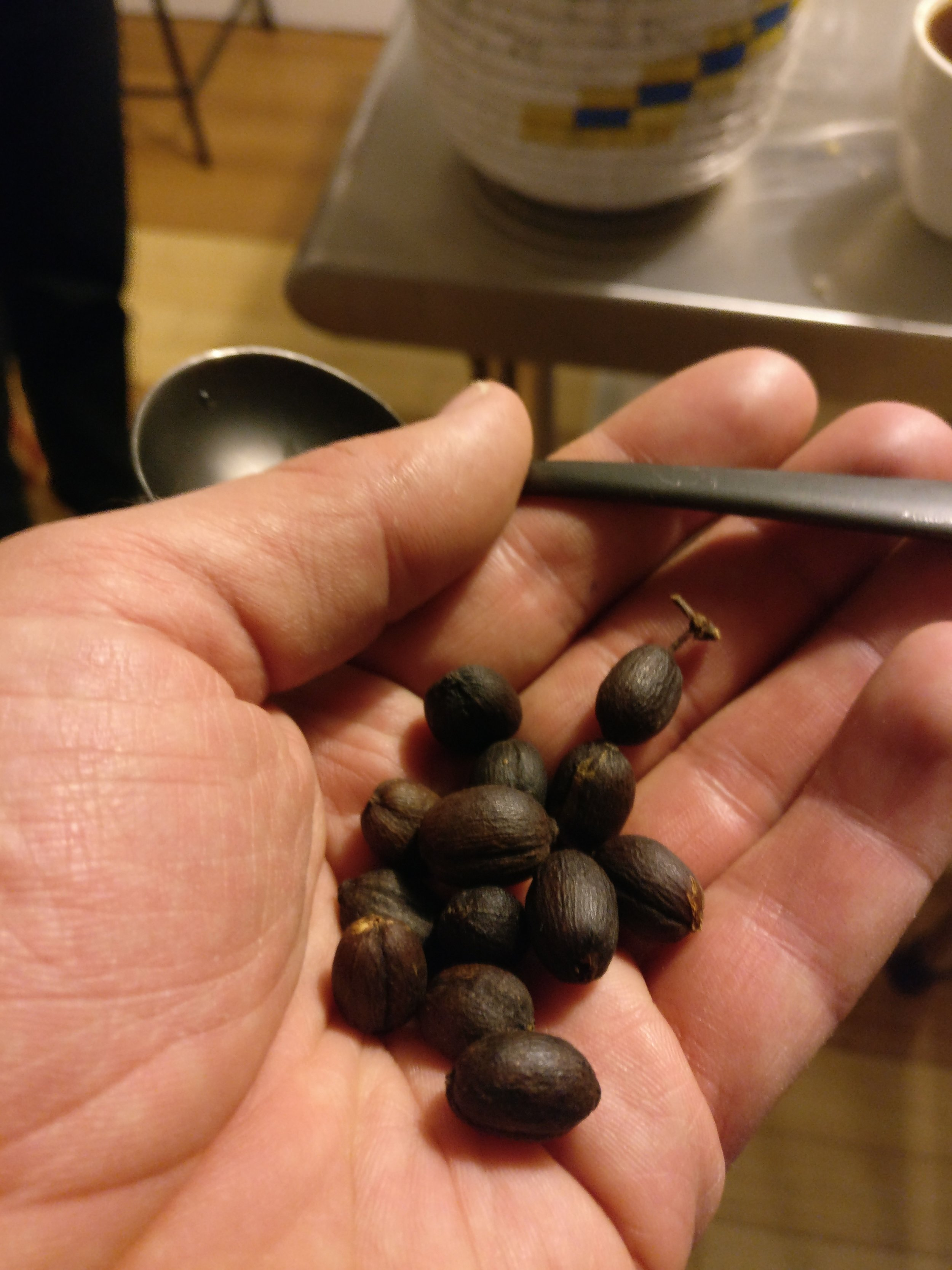 Freshly roasted bean