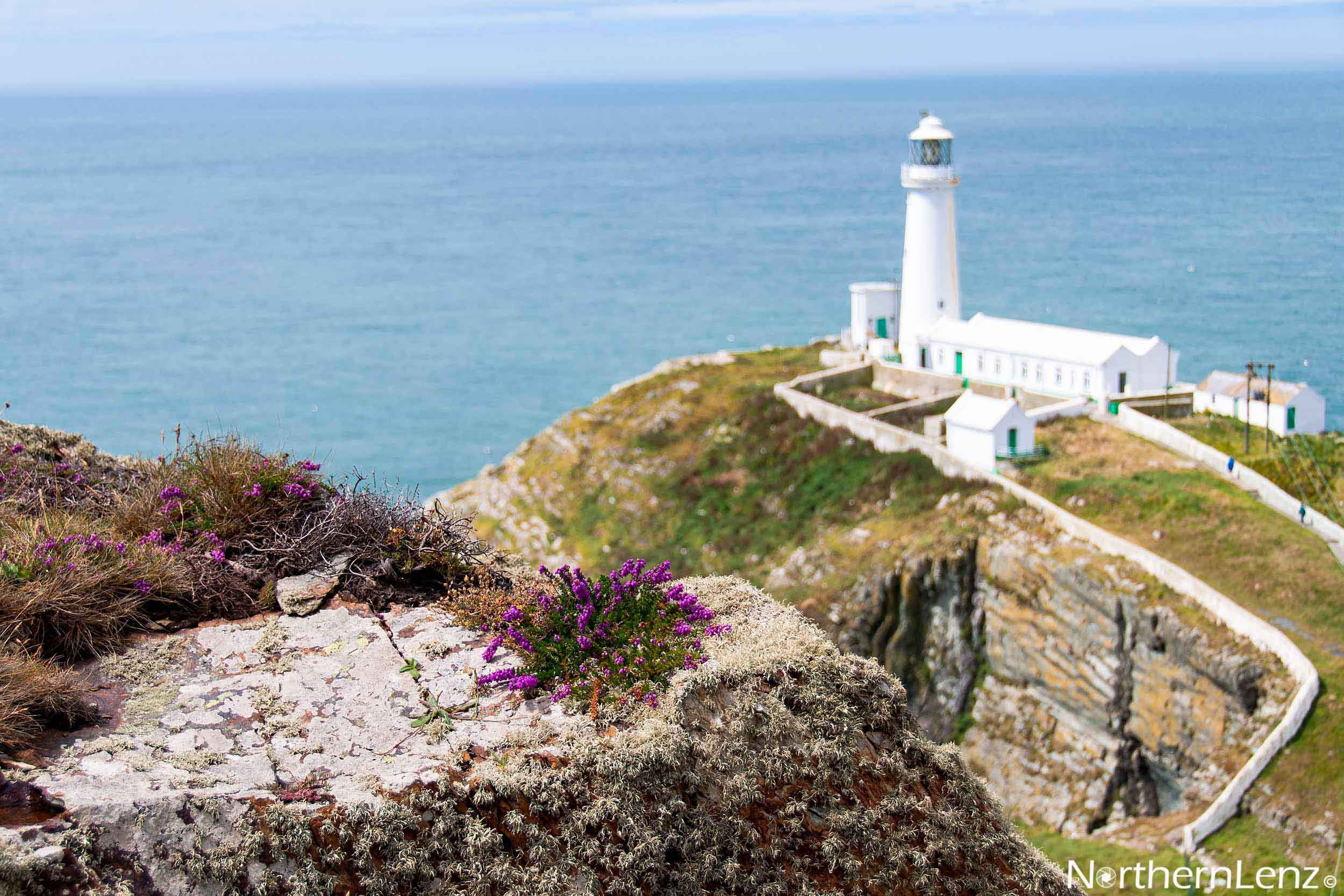 Playing with depth of field at South Stack  Image Ref: CC09