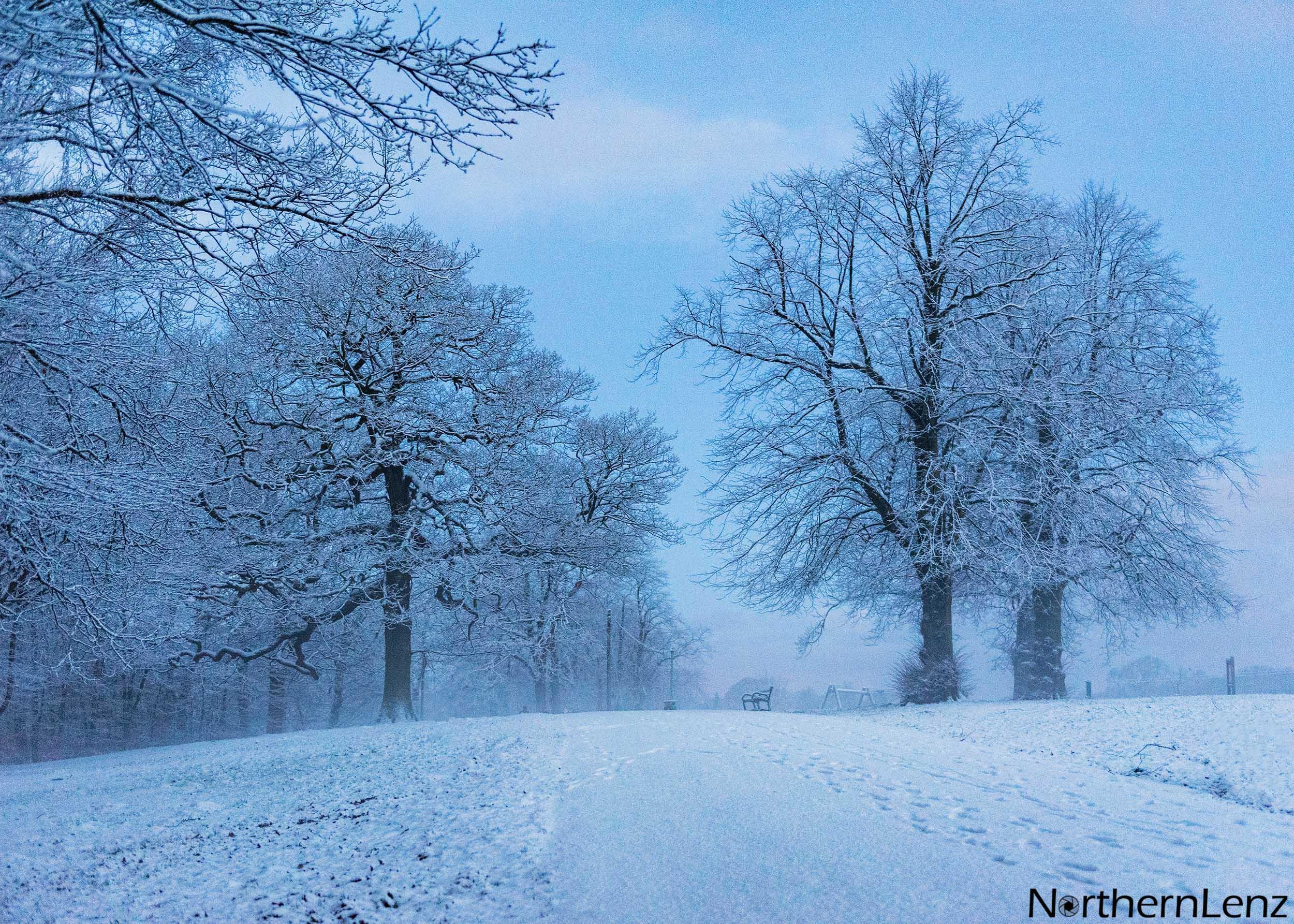 Wintry walk in Astley Park, Chorley  Image Ref: MT04
