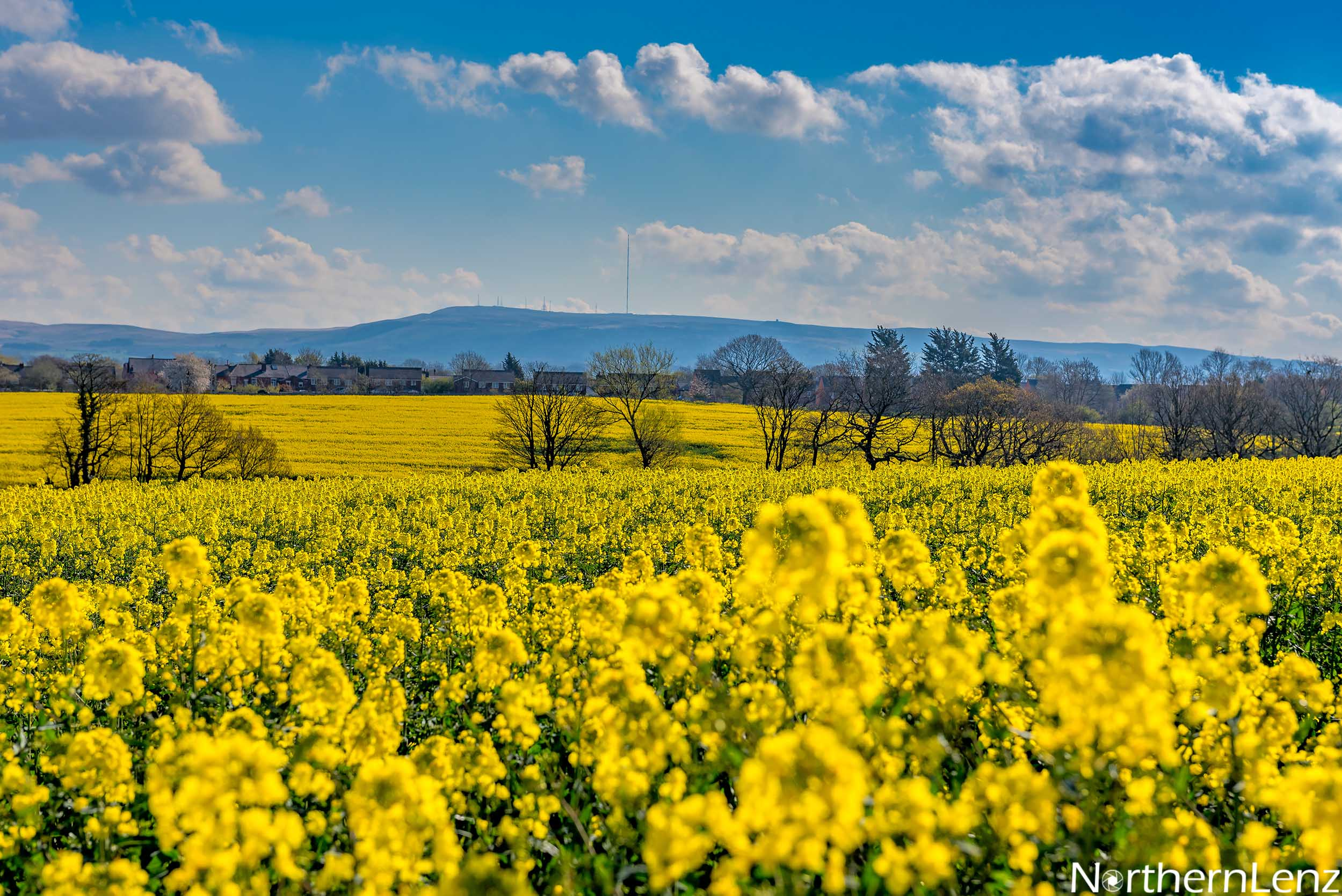 Beautiful spring scene with Winter Hill in the distance  Image Ref: LD11