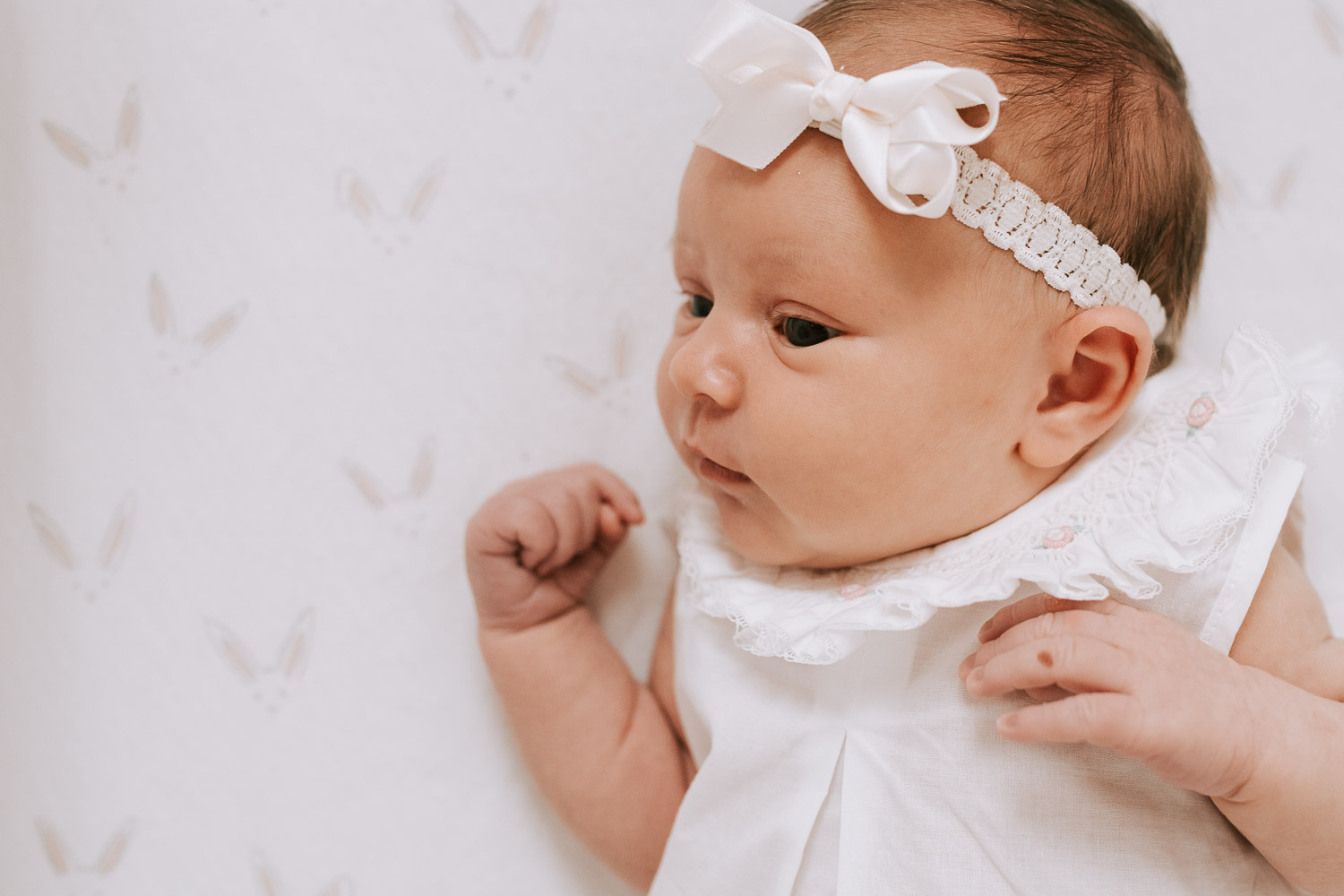 Annaleigh | Newborn Session in Thompsons Station TN -