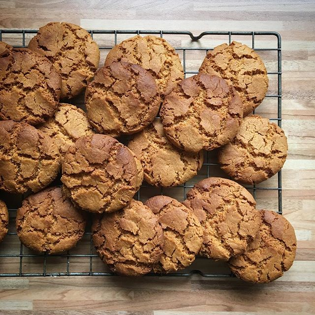 Ginger biscuits on the go