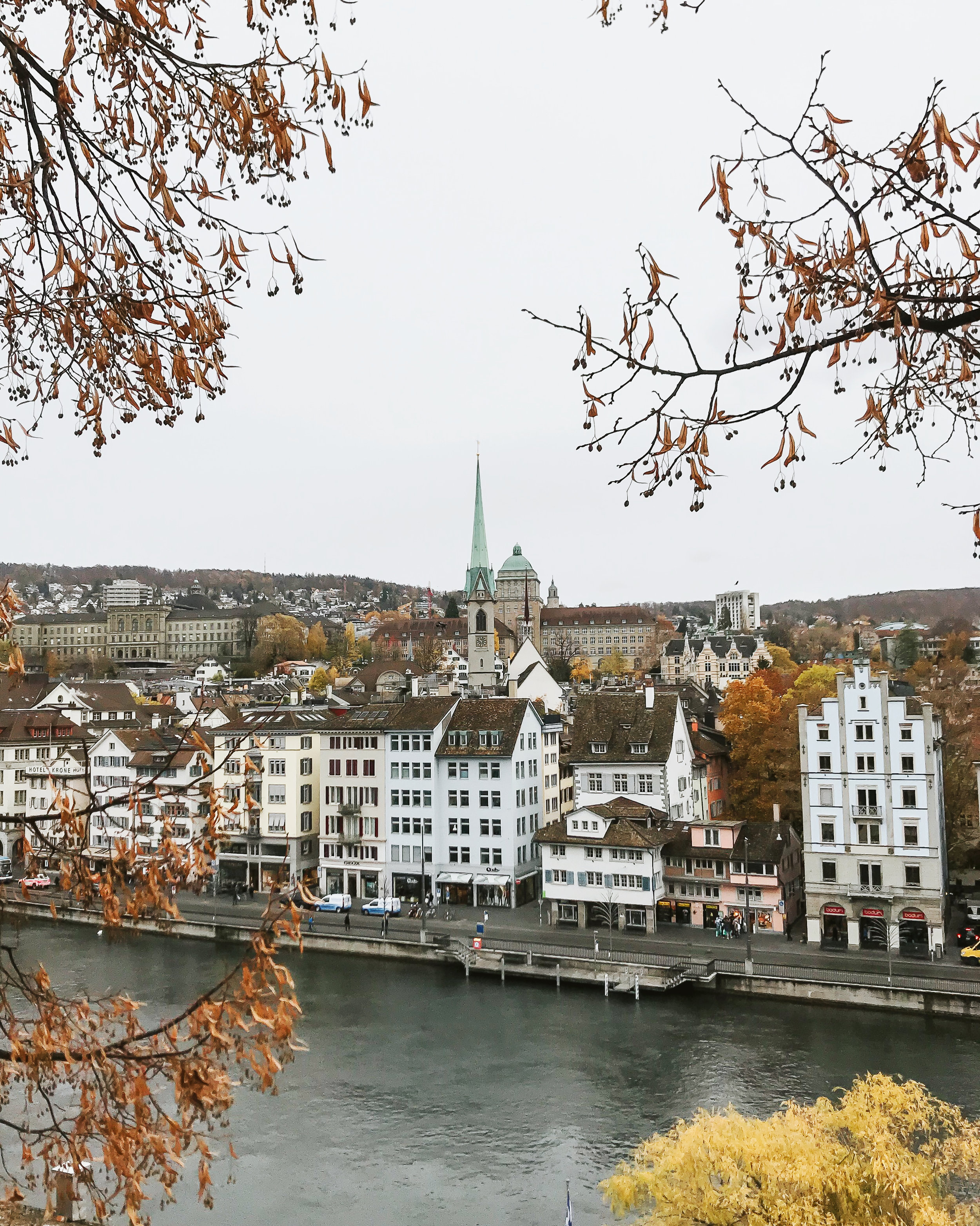 The view from Lindenhof
