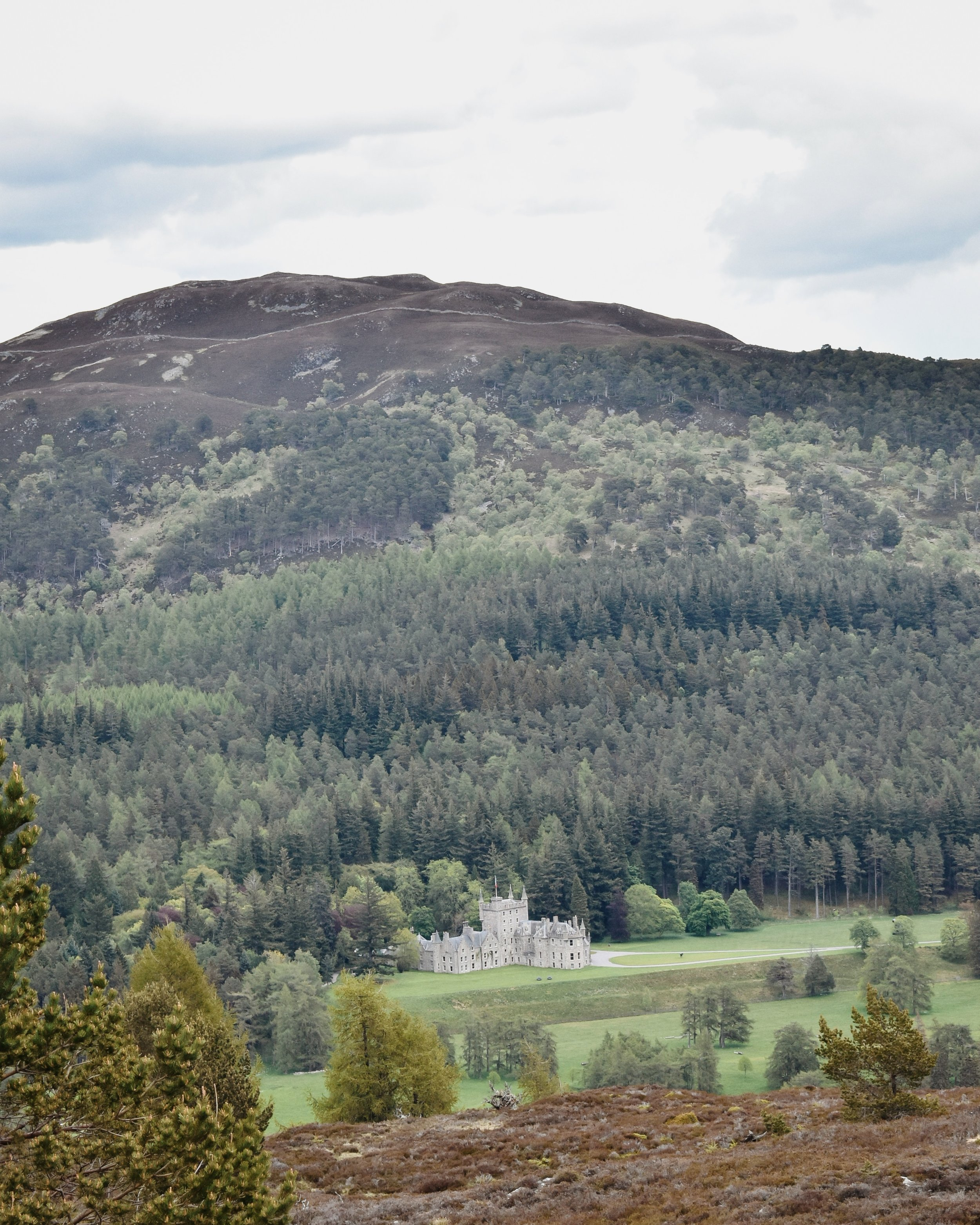 Looking towards the Invercauld estate