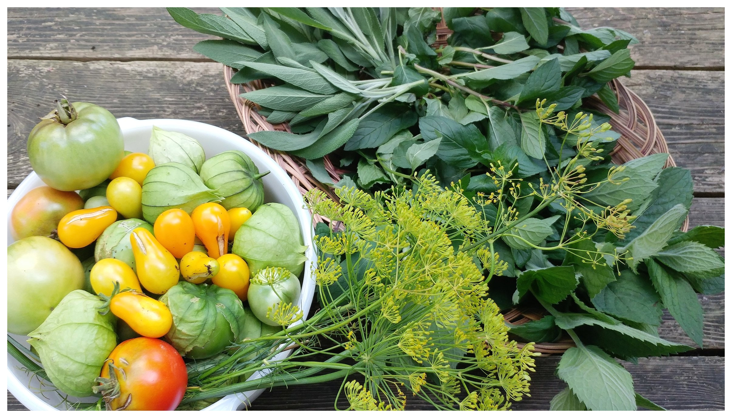 Bountiful harvest from a permaculture garden.