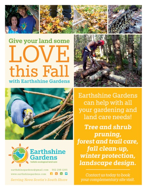 Earthshine Gardens fall land care services