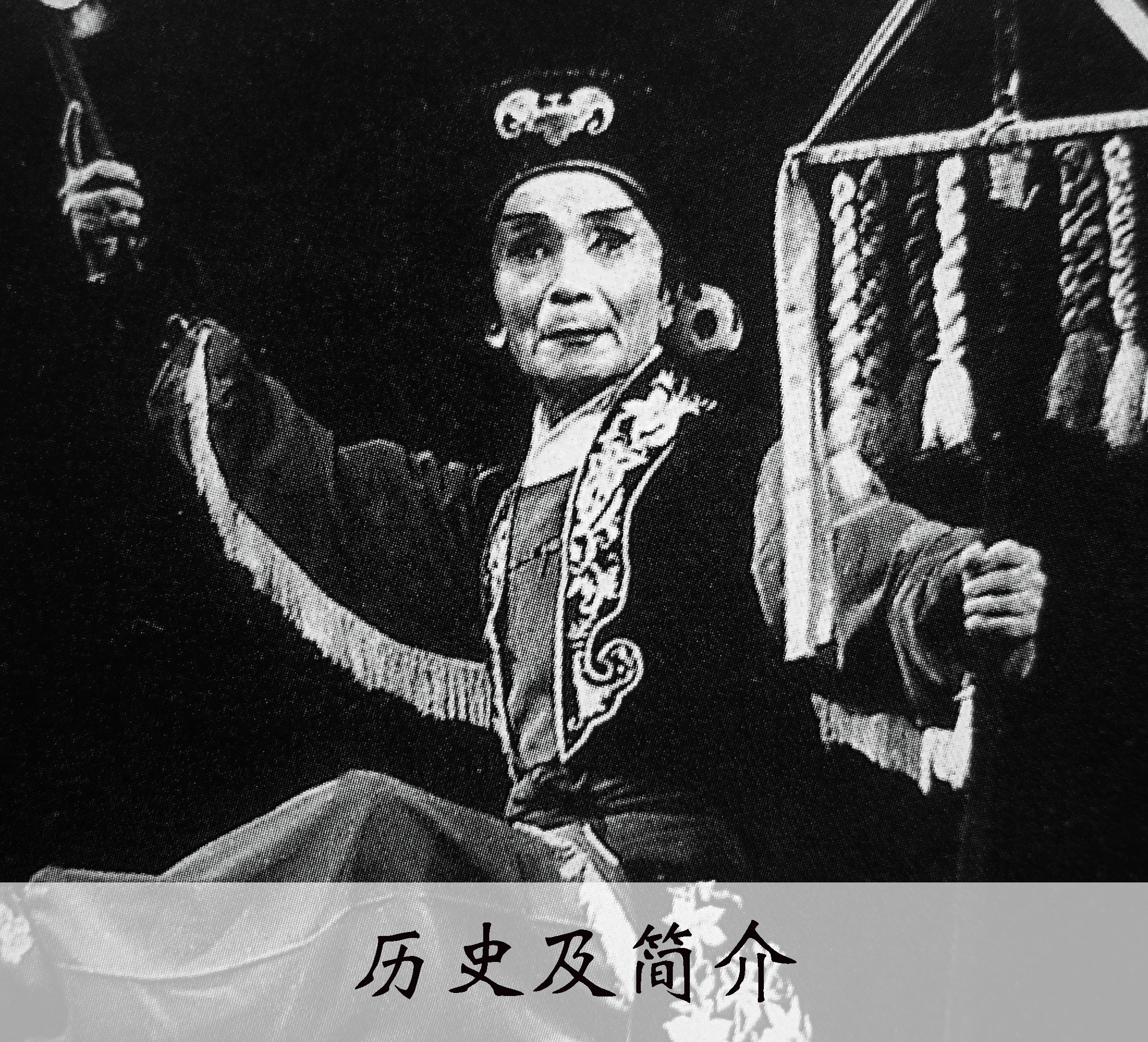 历史及简介.jpg