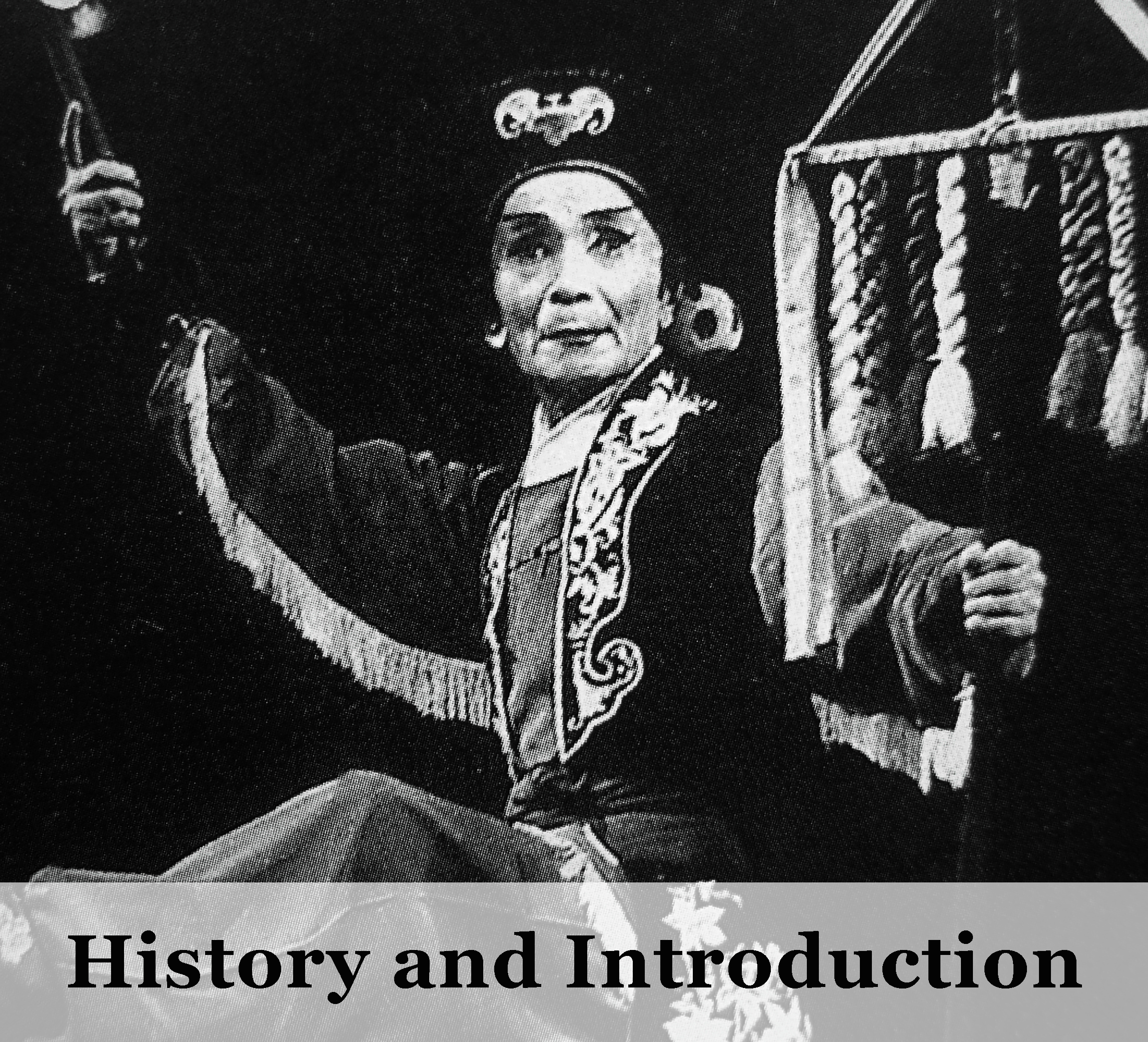 History and Introduction .jpg