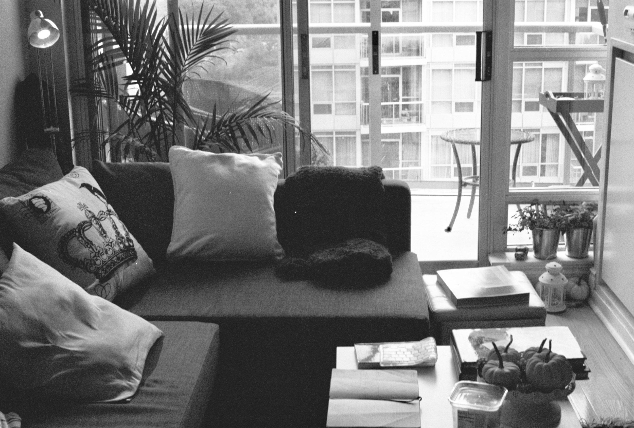 living room bw.jpg