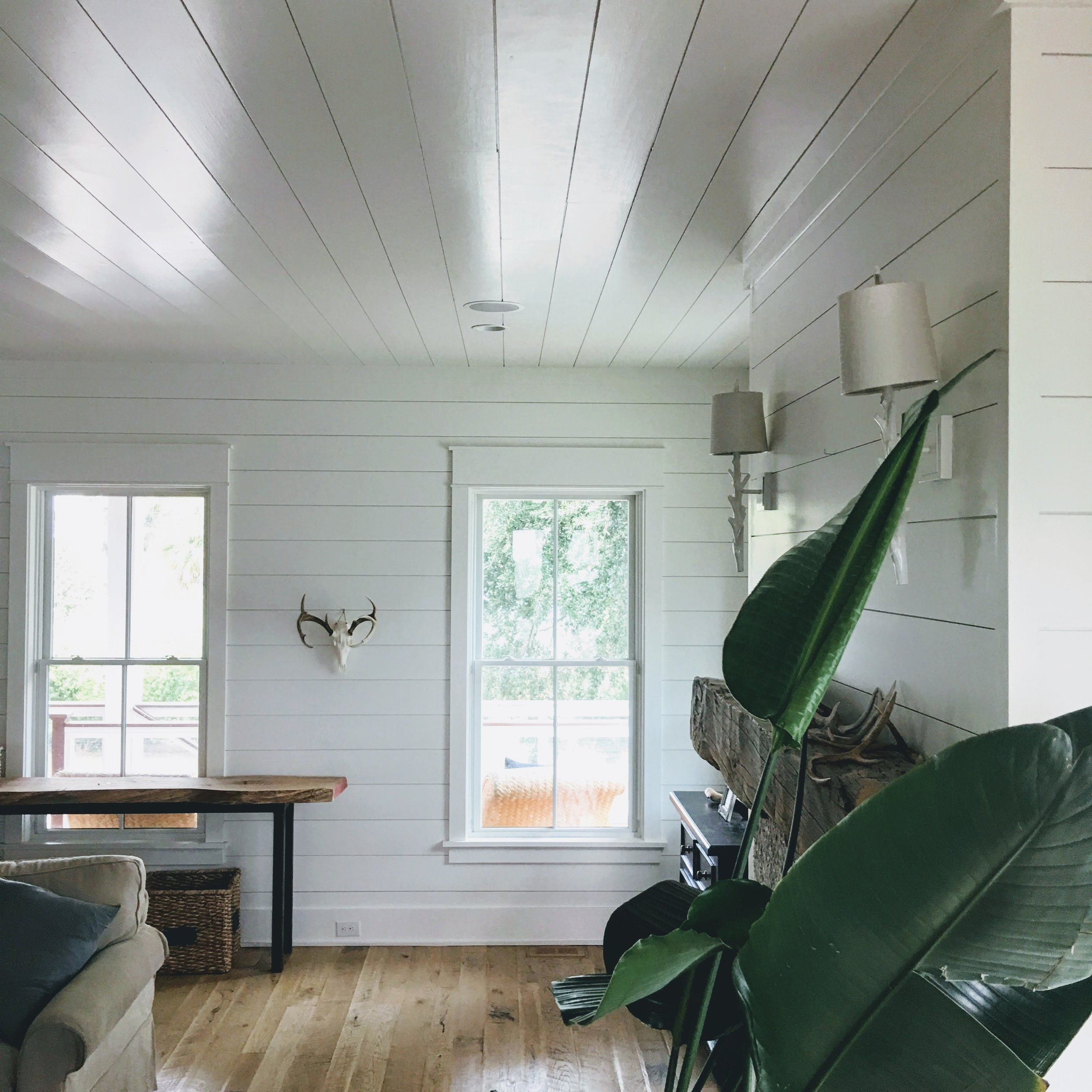 SHIPLAPelliottceiling&wall.JPG