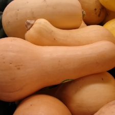 Butternut   Vivid orange flesh is sweet and slightly nutty with a smooth texture that falls apart as it cooks. Rind is edible but squash is usually peeled before use.   Best uses: soups, purees, recipes where smooth texture is highlighted.