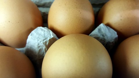 Wholesome Harvest Brown Eggs.jpg