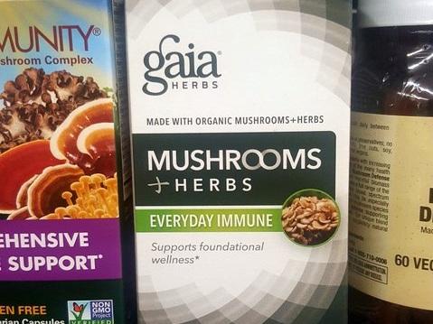 Gaia+mushrooms+and+herbs.jpg