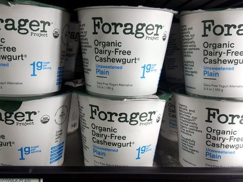 oct 19 forager cashewgurt.jpg