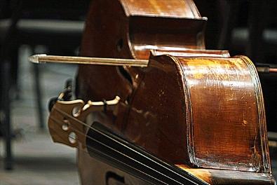 Bass & Cello