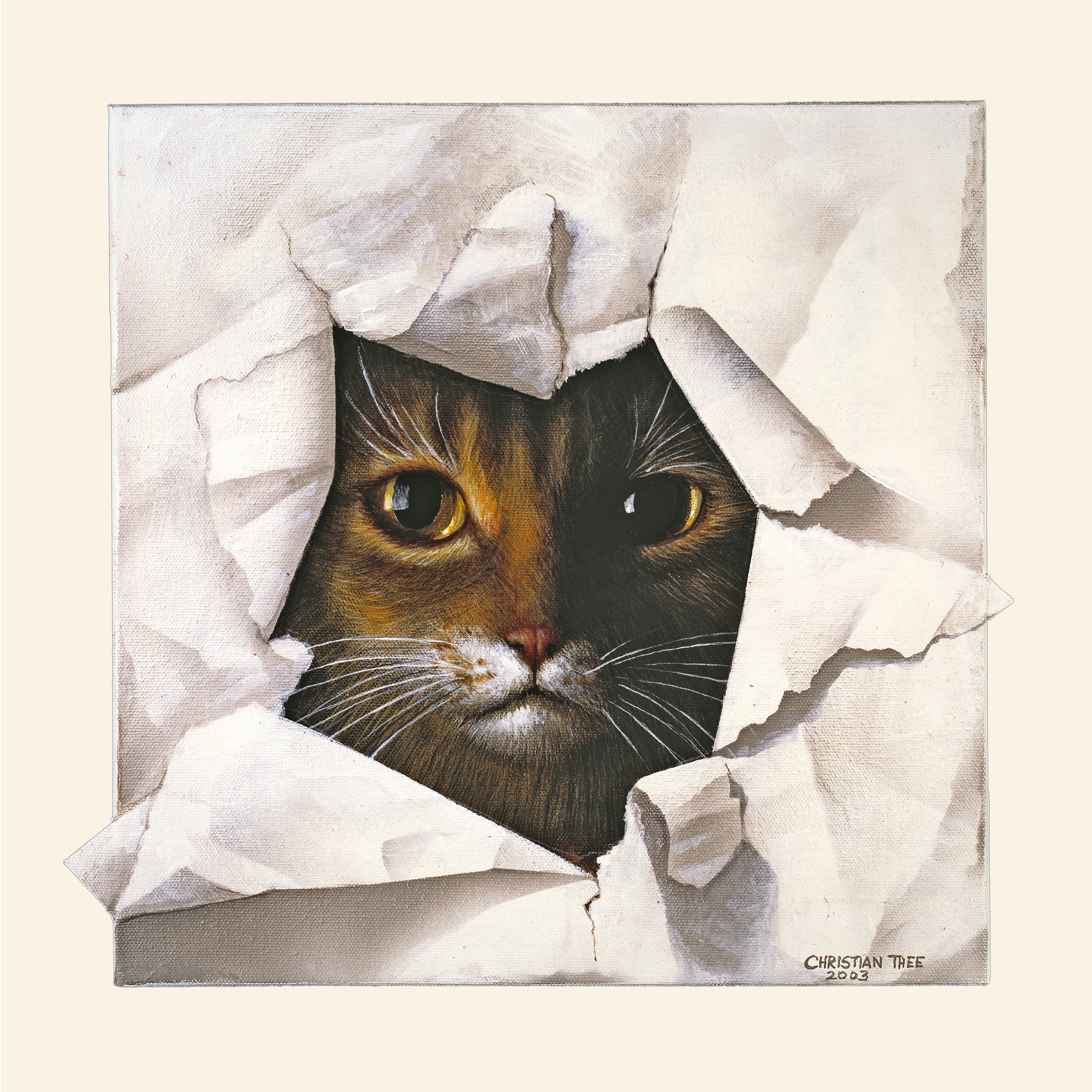 """Cat in Paper, Acrylic on Canvas, 12"""" x 12"""""""