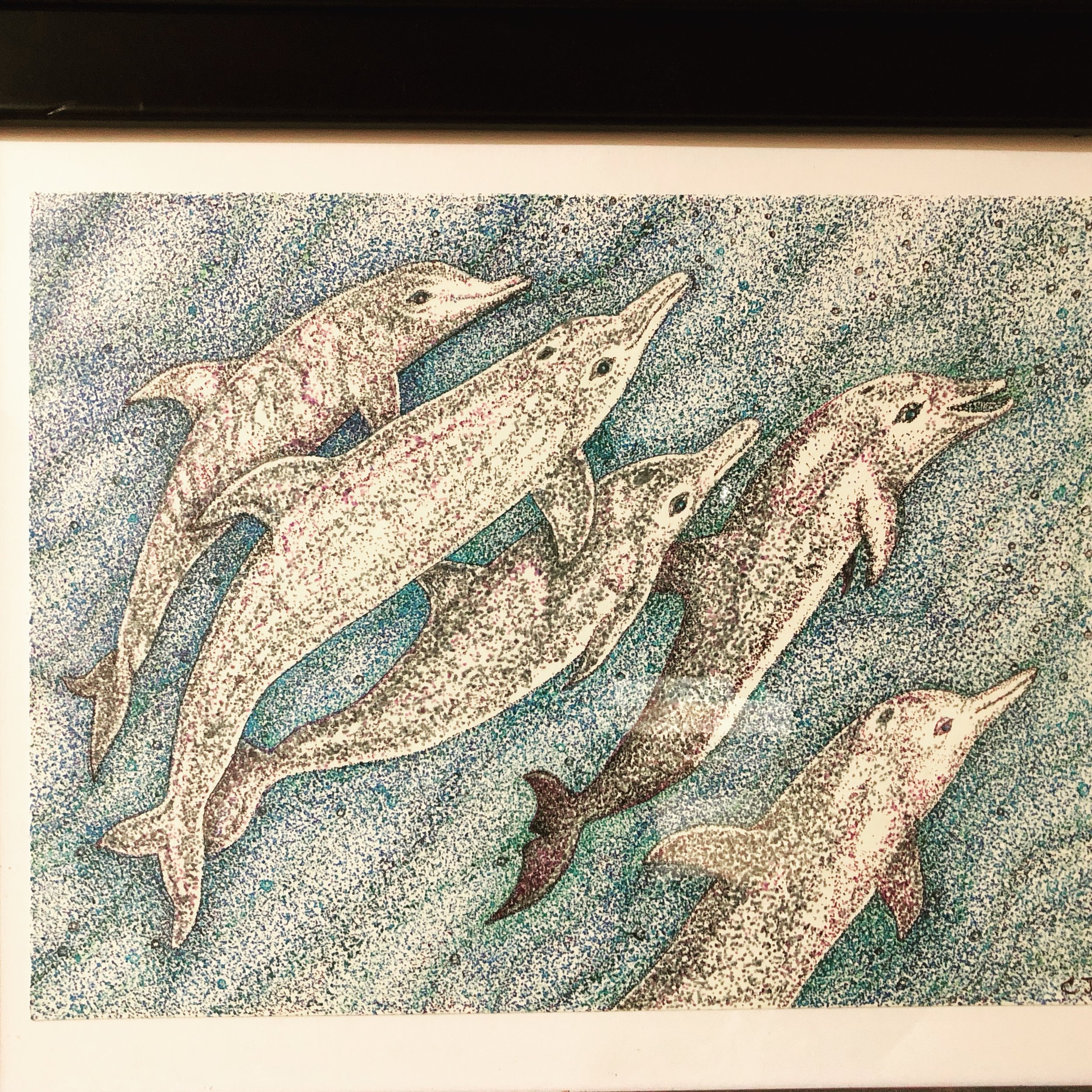 """A Family of Dolphins - Endangered Series, Pen and Ink, 10"""" x 12"""" (framed)"""
