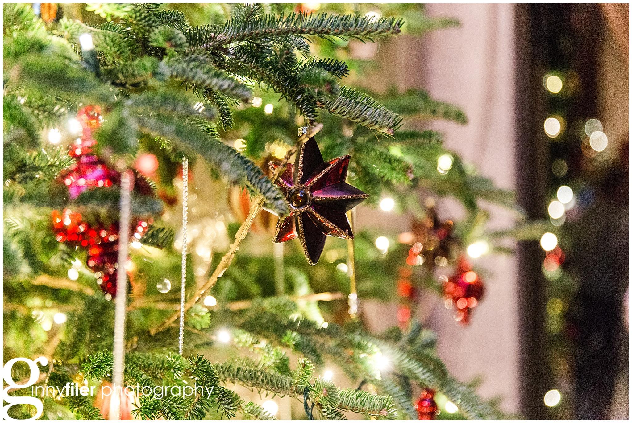 longwood_Christmas_0012.jpg