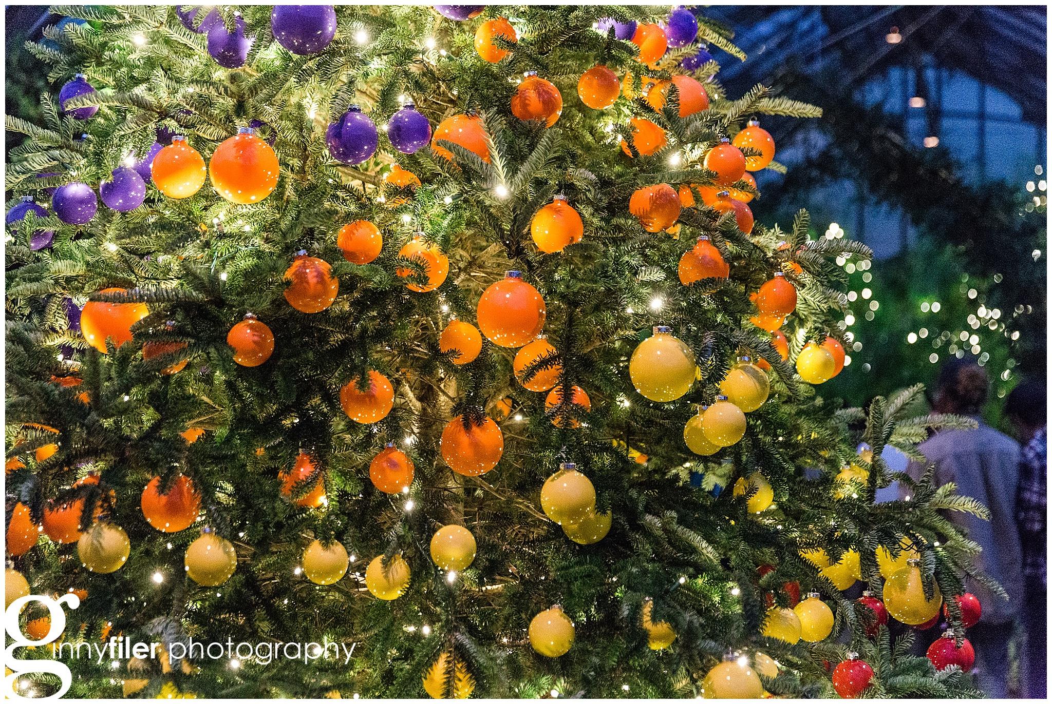 longwood_Christmas_0020.jpg