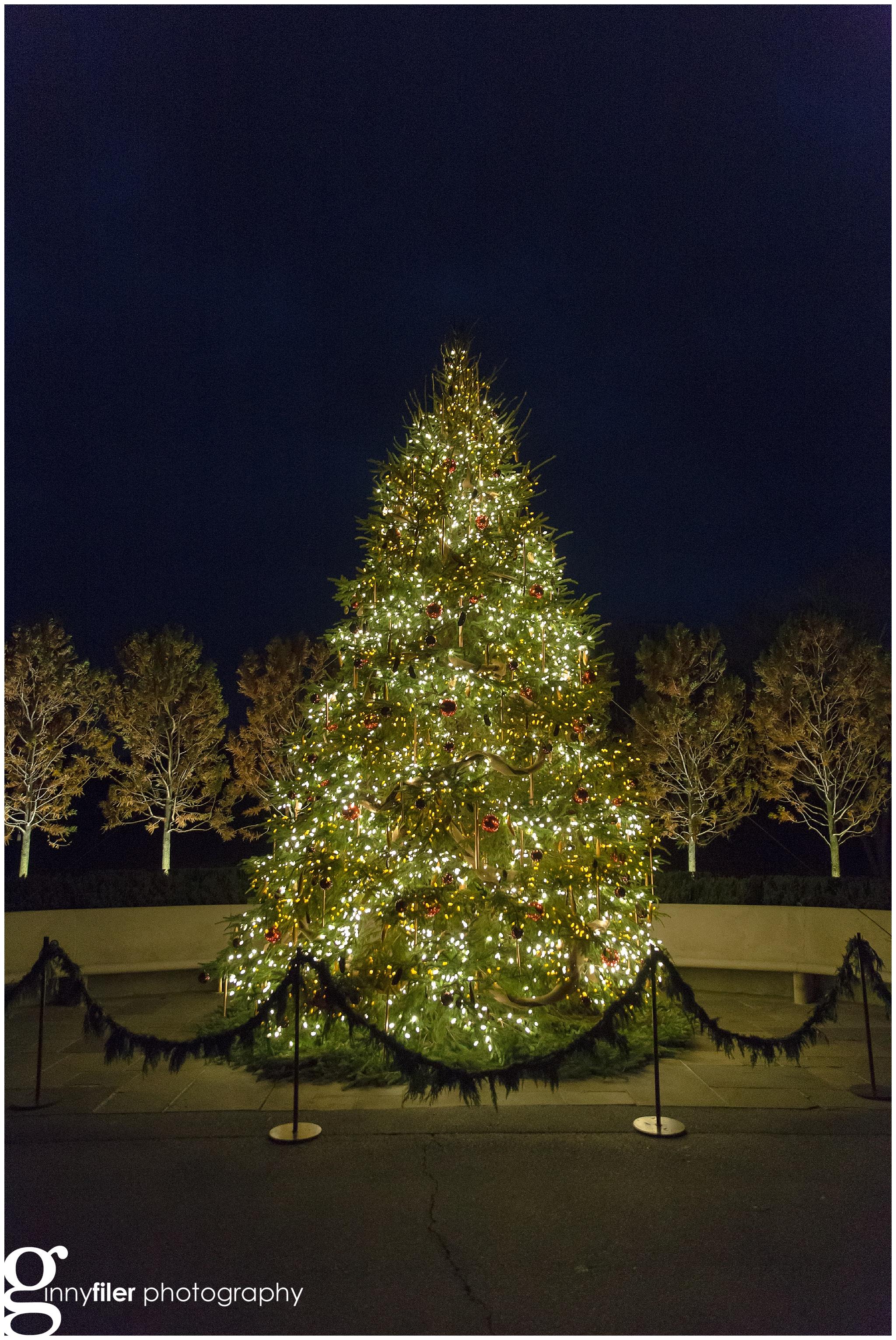 longwood_Christmas_0026.jpg