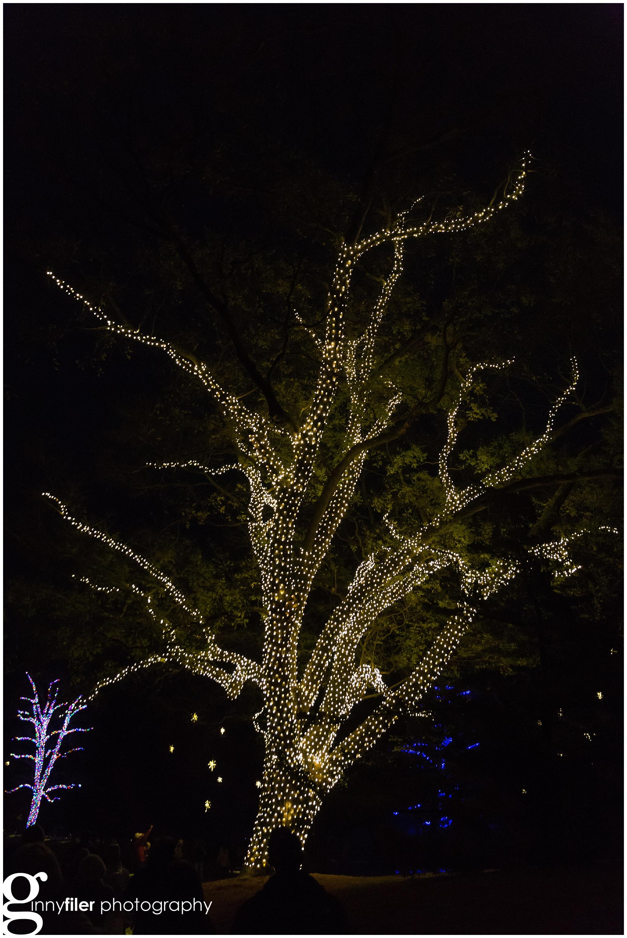 longwood_Christmas_0029.jpg