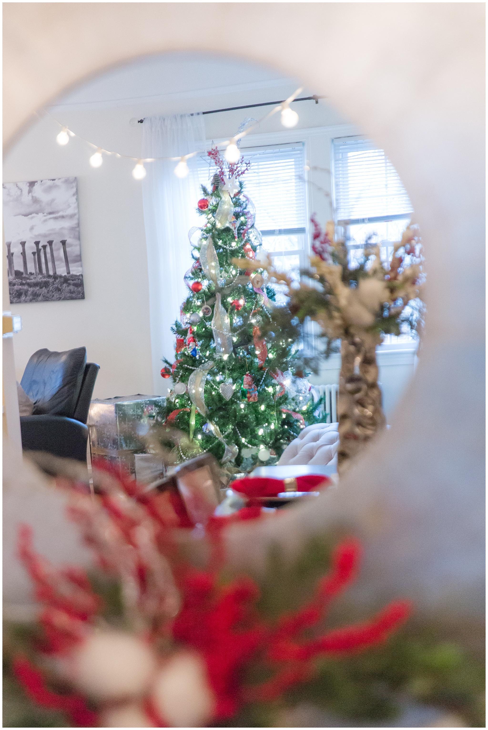 Christmas decorations_0014.jpg