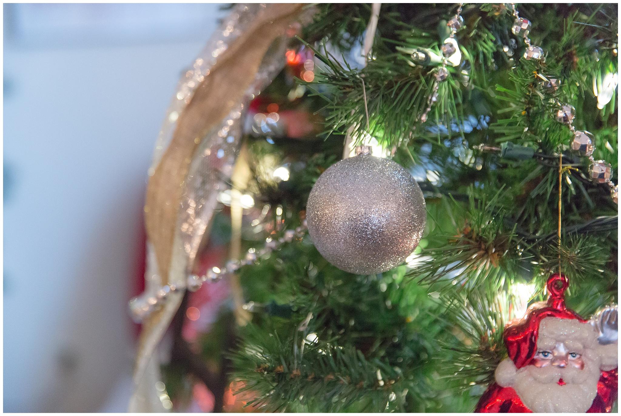 Christmas decorations_0019.jpg